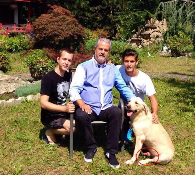 Doar câinele familiei a înțeles ce merită cu adevărat Adrian Năstase