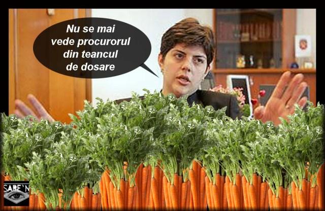 productia de morcovi